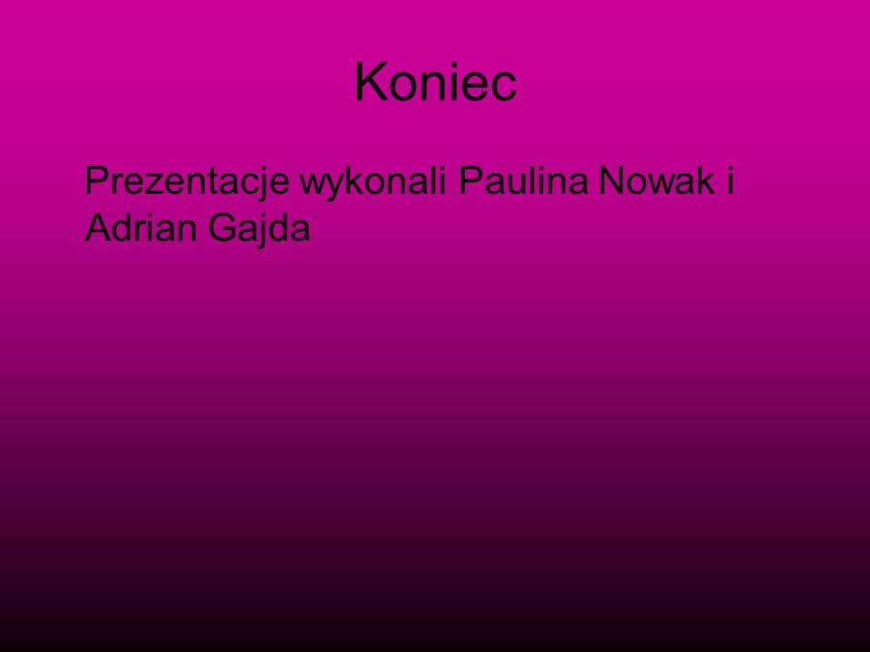 Koniec Prezentacje wykonali Paulina Nowak i Adrian Gajda