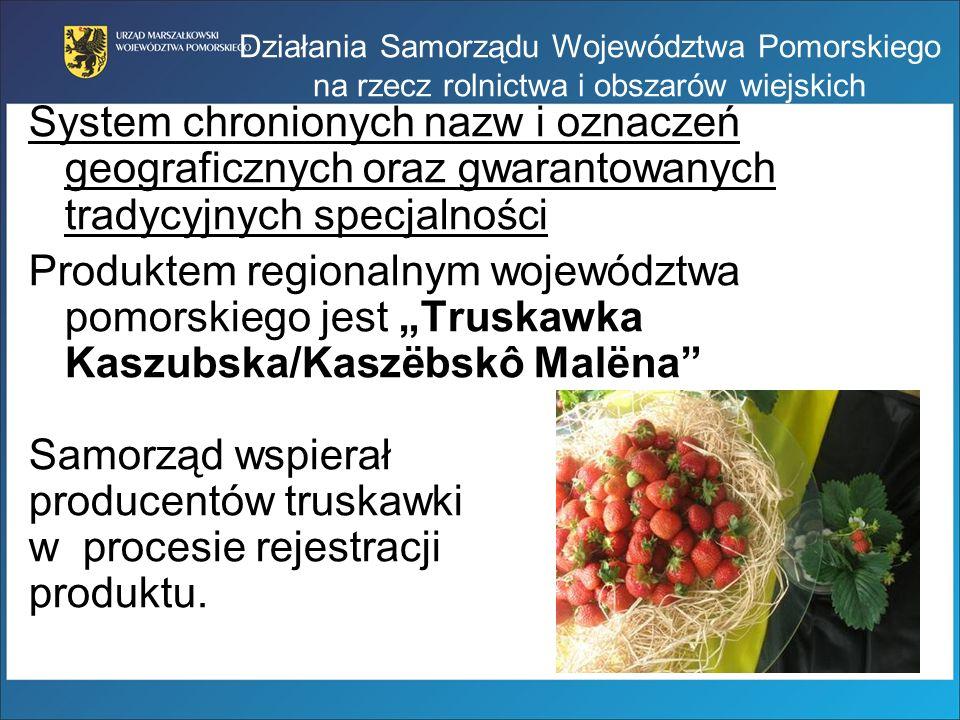 producentów truskawki w procesie rejestracji produktu.