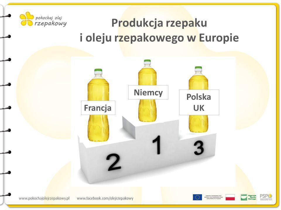 Produkcja rzepaku i oleju rzepakowego w Europie