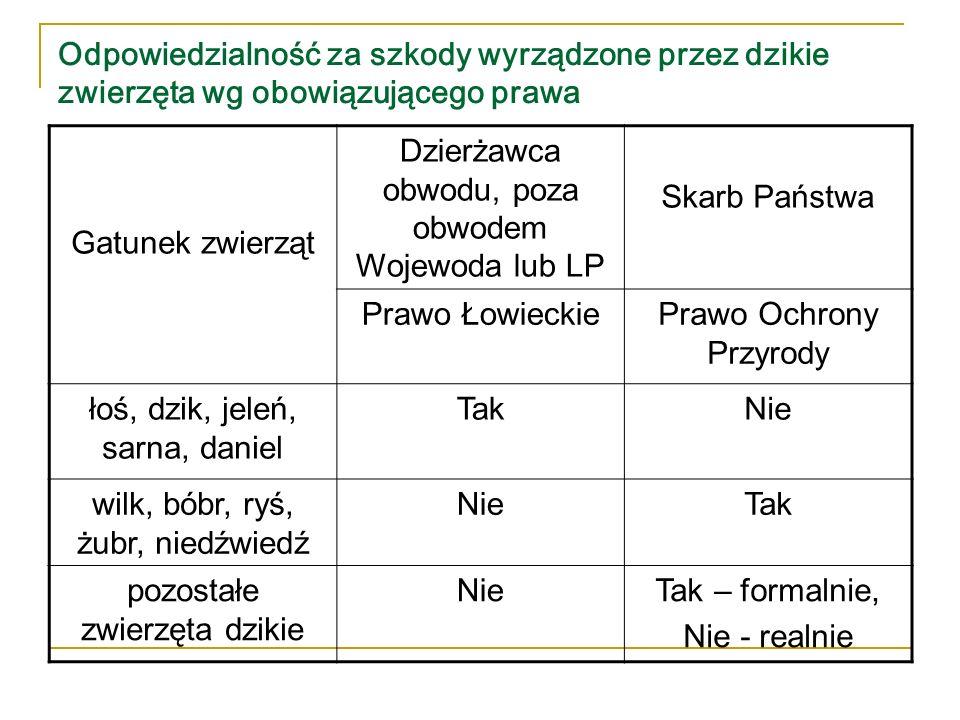 Dzierżawca obwodu, poza obwodem Wojewoda lub LP Skarb Państwa