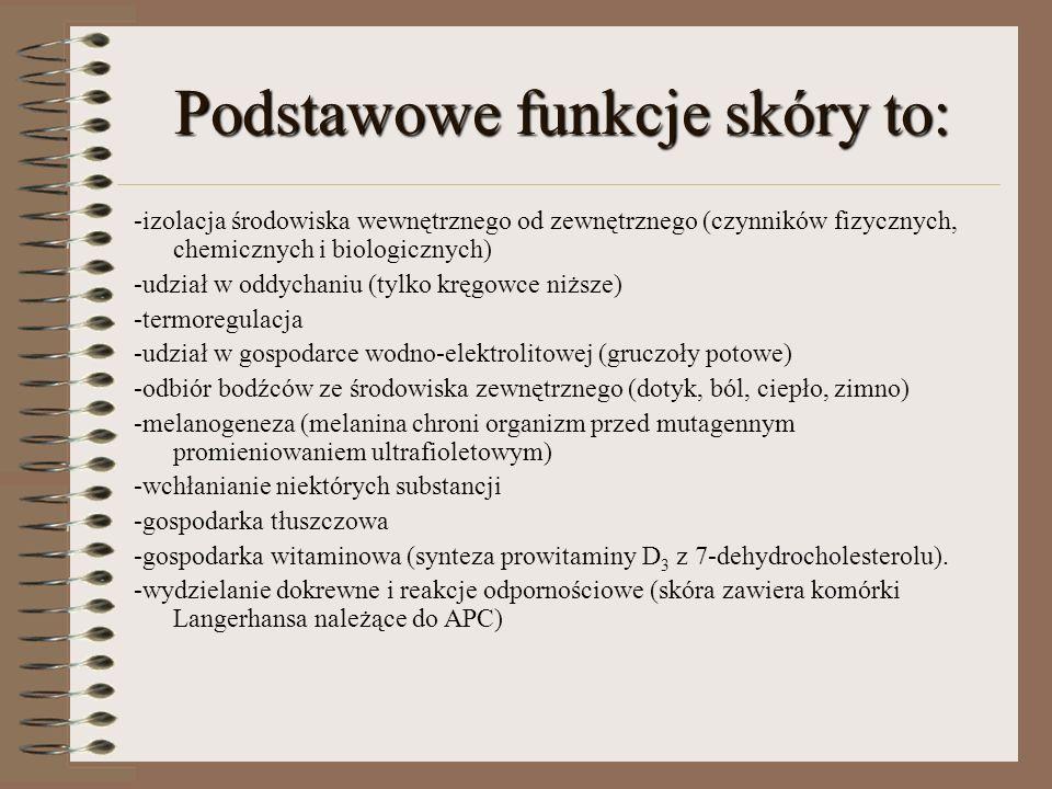 Podstawowe funkcje skóry to: