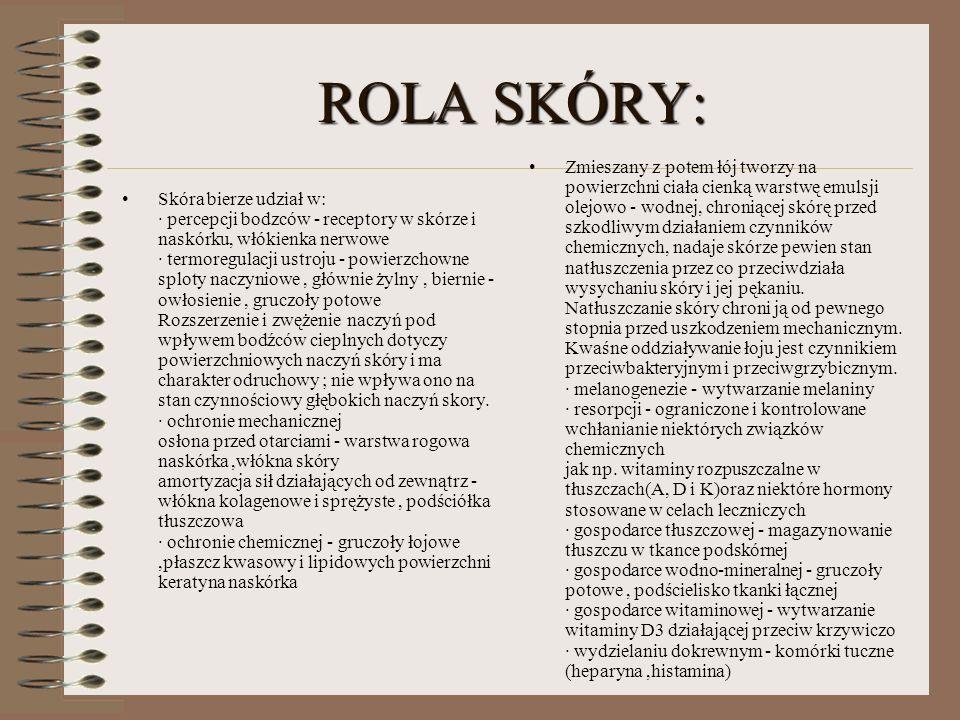 ROLA SKÓRY: