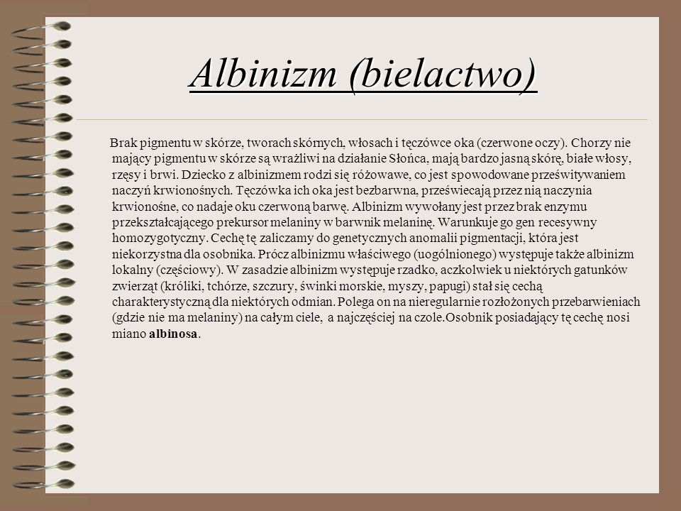 Albinizm (bielactwo)