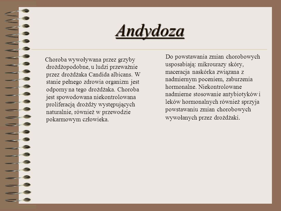 Andydoza