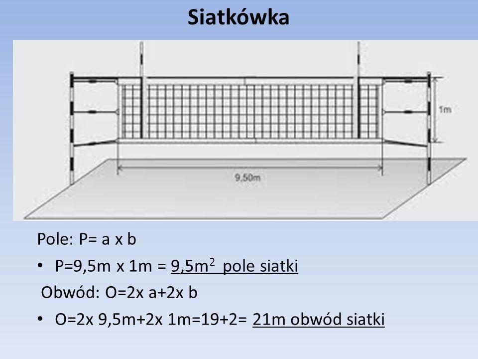 Siatkówka Pole: P= a x b P=9,5m x 1m = 9,5m2 pole siatki