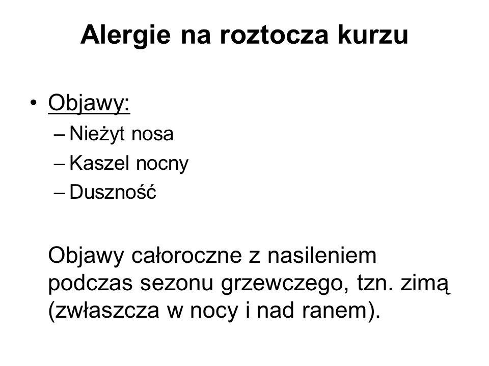 Alergie na roztocza kurzu