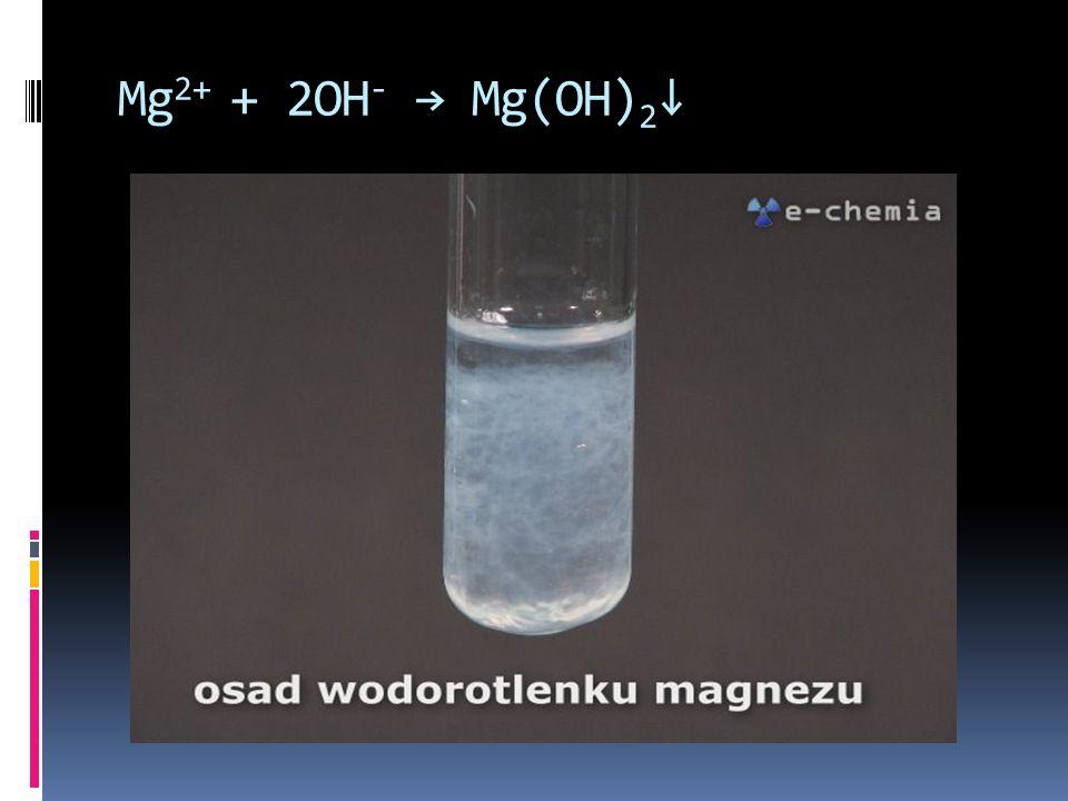 Mg2+ + 2OH- → Mg(OH)2↓