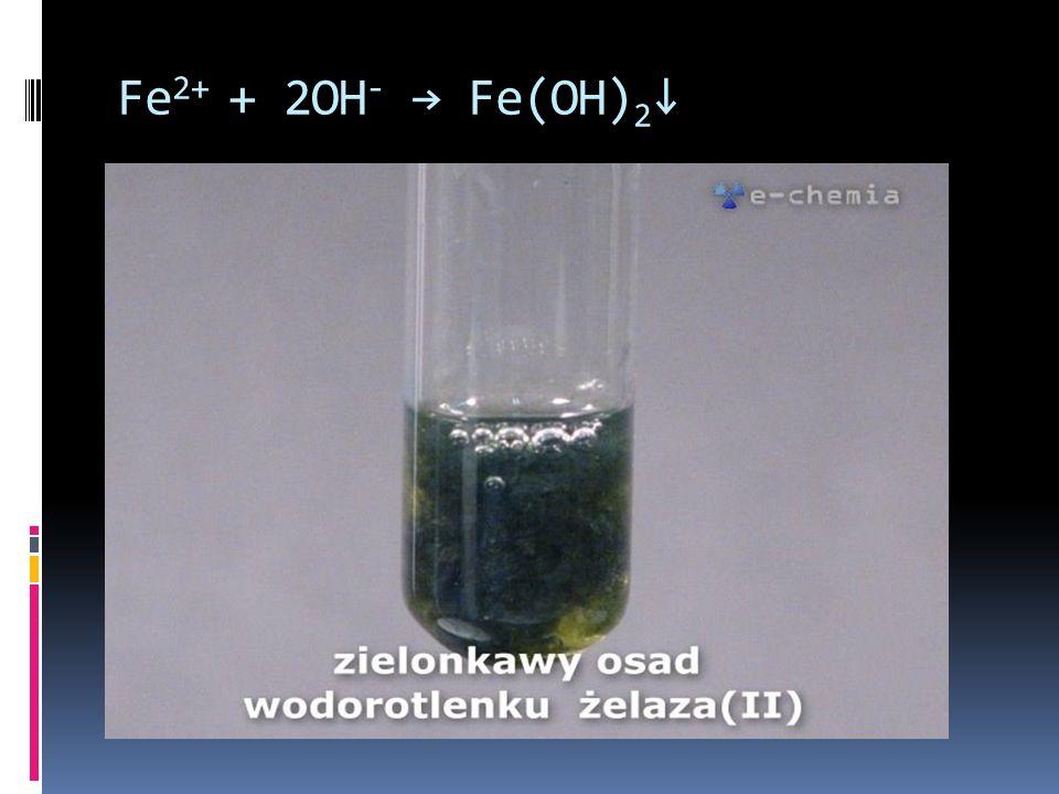 Fe2+ + 2OH- → Fe(OH)2↓
