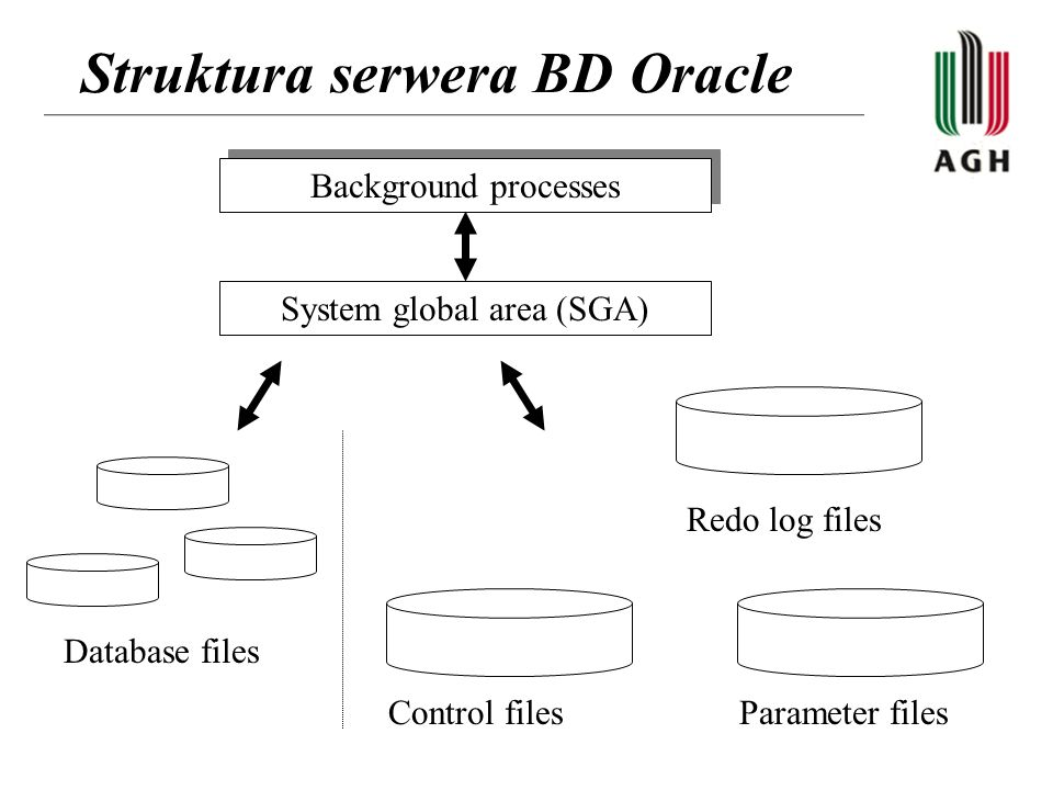 Struktura serwera BD Oracle