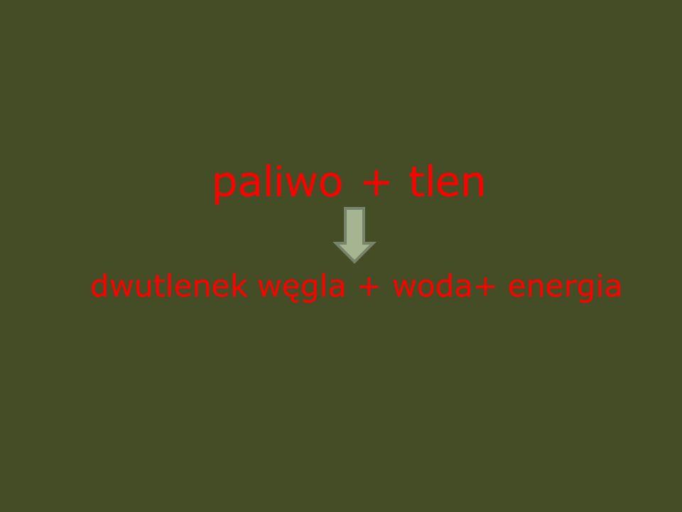 dwutlenek węgla + woda+ energia