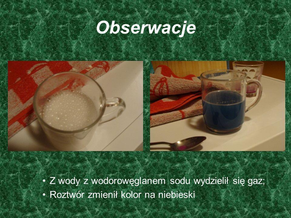 Obserwacje Z wody z wodorowęglanem sodu wydzielił się gaz;