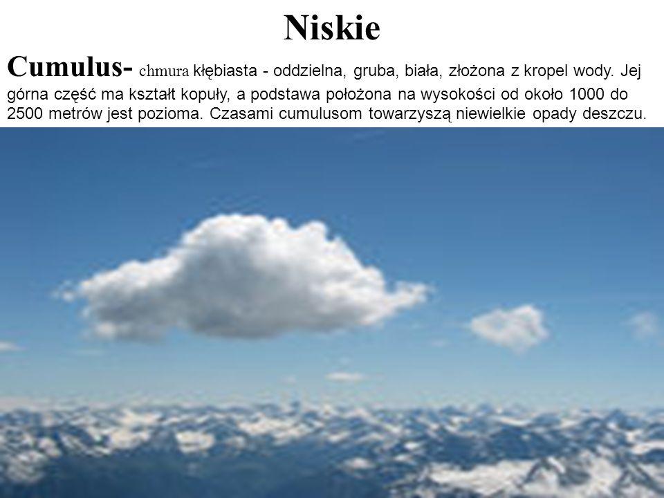 Niskie