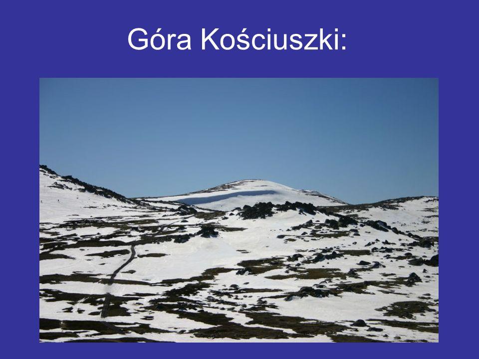 Góra Kościuszki:
