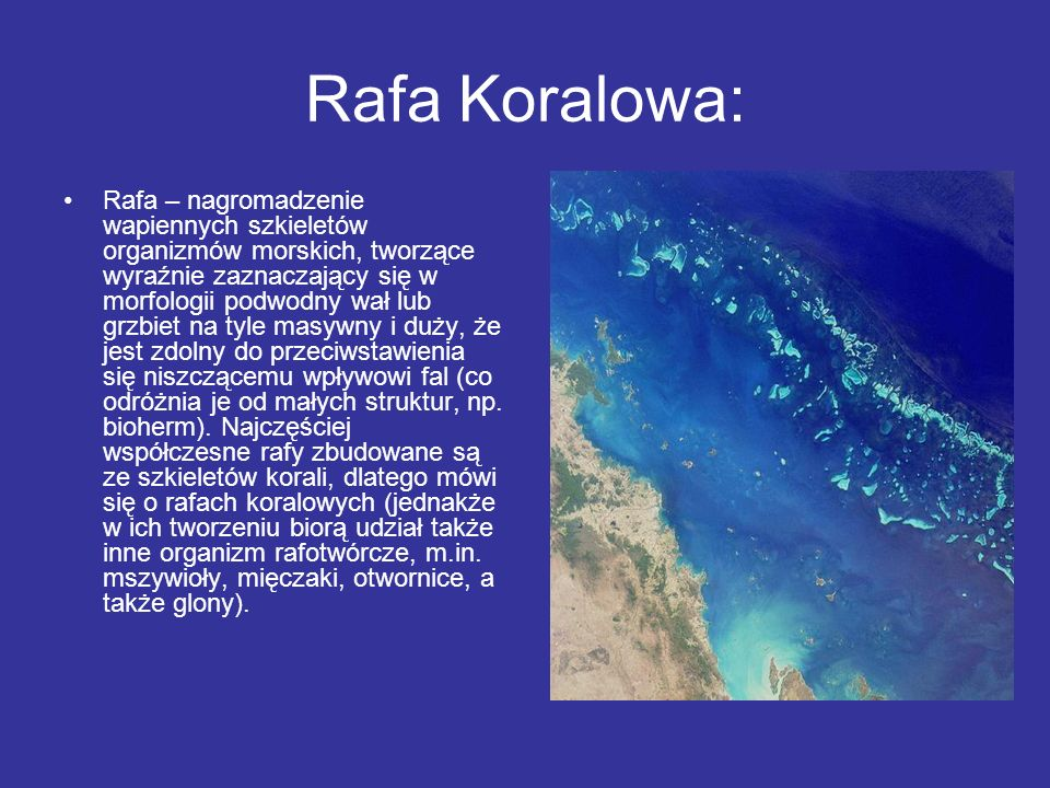 Rafa Koralowa: