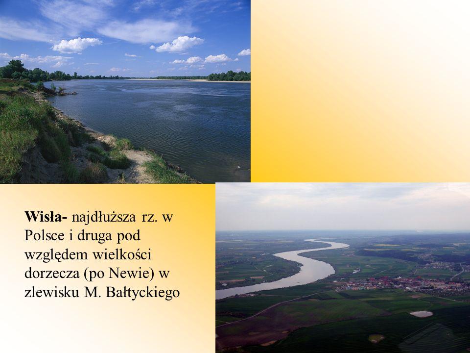 Wisła- najdłuższa rz.w Polsce i druga pod względem wielkości dorzecza (po Newie) w zlewisku M.