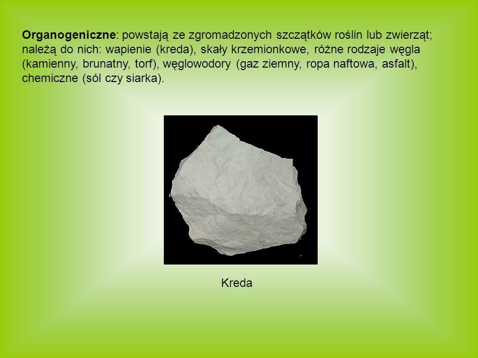 Organogeniczne: powstają ze zgromadzonych szczątków roślin lub zwierząt; należą do nich: wapienie (kreda), skały krzemionkowe, różne rodzaje węgla (kamienny, brunatny, torf), węglowodory (gaz ziemny, ropa naftowa, asfalt), chemiczne (sól czy siarka).
