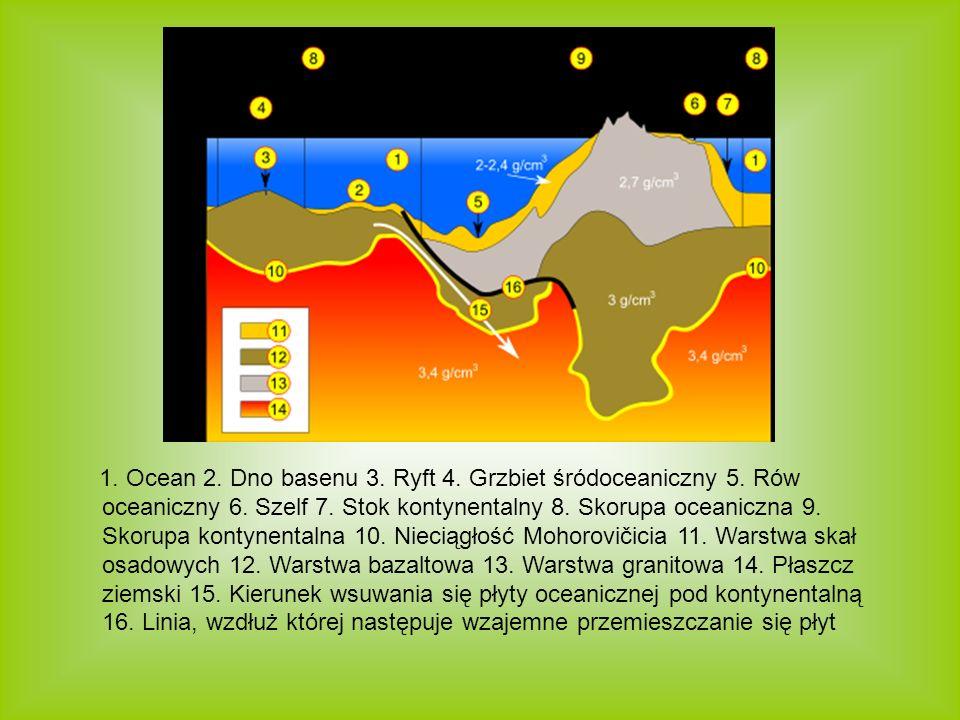 1. Ocean 2. Dno basenu 3. Ryft 4. Grzbiet śródoceaniczny 5