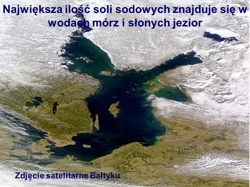 Największa ilość soli sodowych znajduje się w wodach mórz i słonych jezior