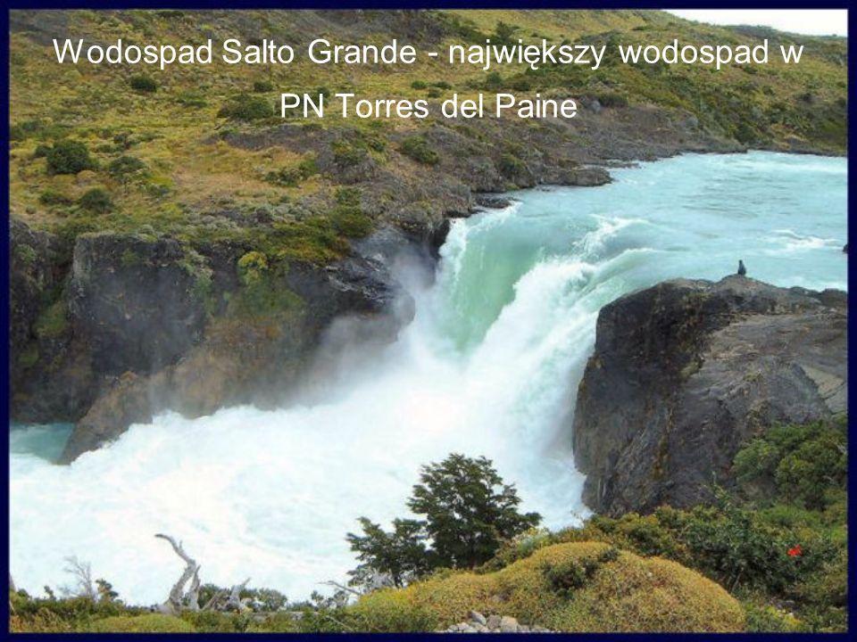 Wodospad Salto Grande - największy wodospad w PN Torres del Paine