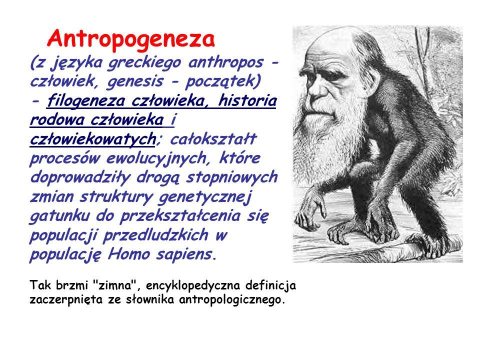 (z języka greckiego anthropos - człowiek, genesis - początek)