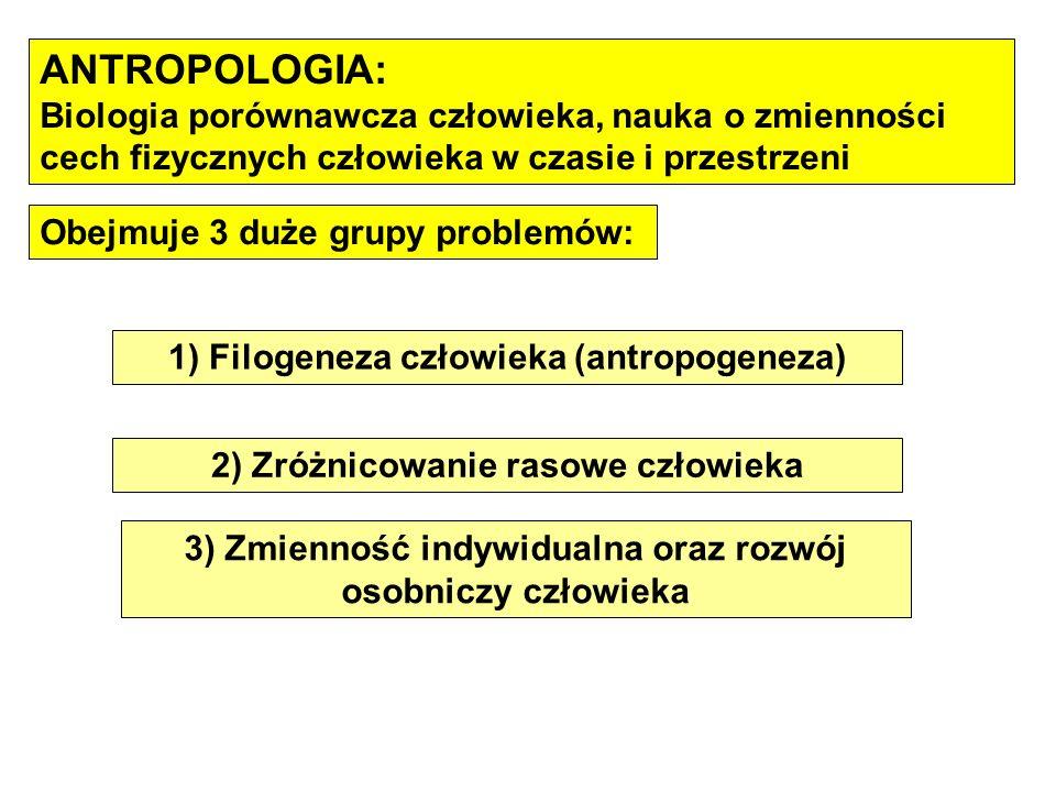 ANTROPOLOGIA: Biologia porównawcza człowieka, nauka o zmienności cech fizycznych człowieka w czasie i przestrzeni.