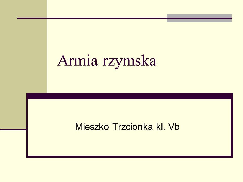 Mieszko Trzcionka kl. Vb