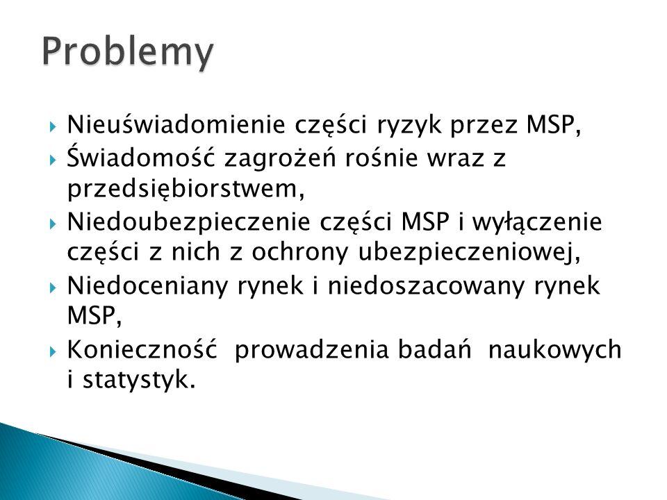 Problemy Nieuświadomienie części ryzyk przez MSP,