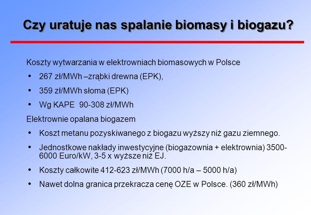 Czy uratuje nas spalanie biomasy i biogazu