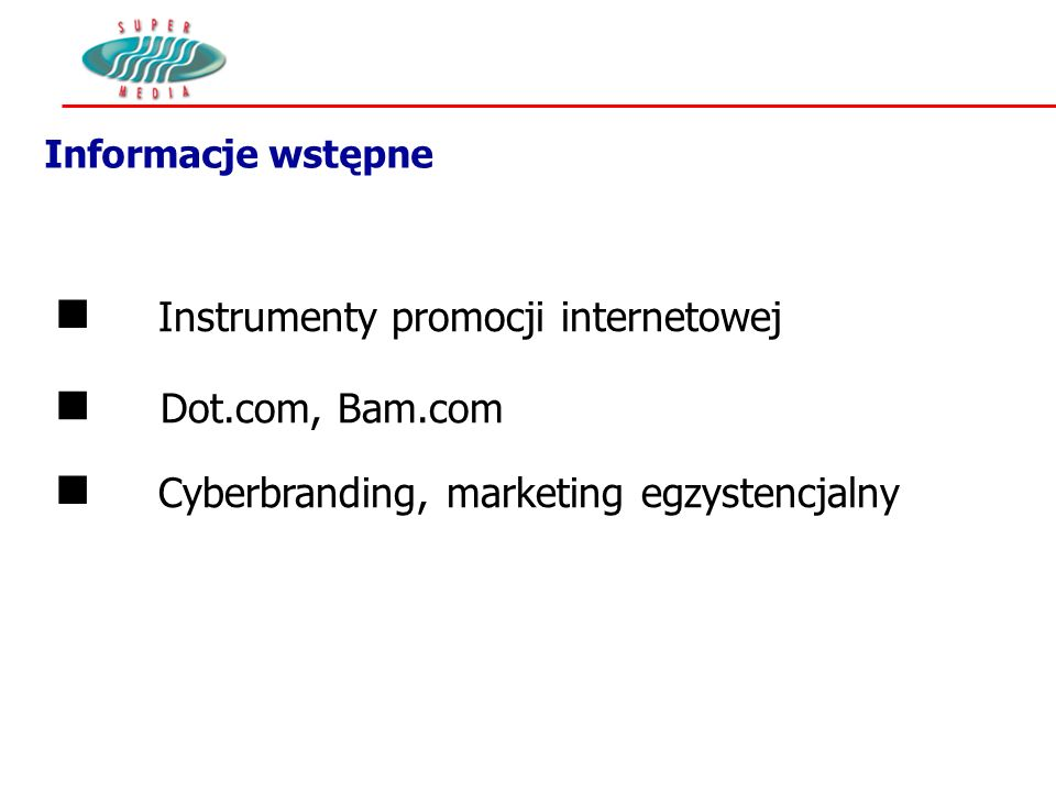 Informacje wstępne Instrumenty promocji internetowej Dot.com, Bam.com