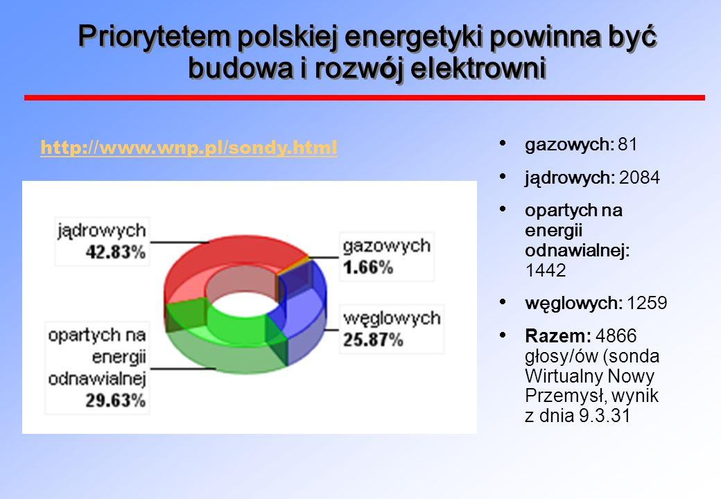 Priorytetem polskiej energetyki powinna być budowa i rozwój elektrowni