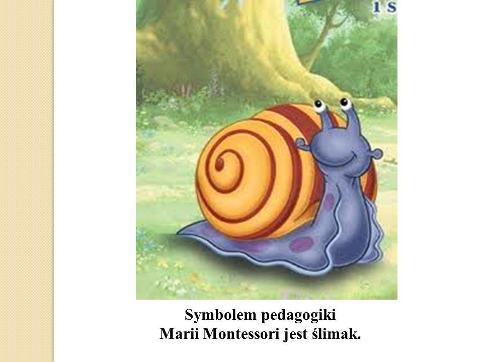 Marii Montessori jest ślimak.
