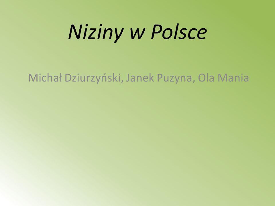 Michał Dziurzyński, Janek Puzyna, Ola Mania