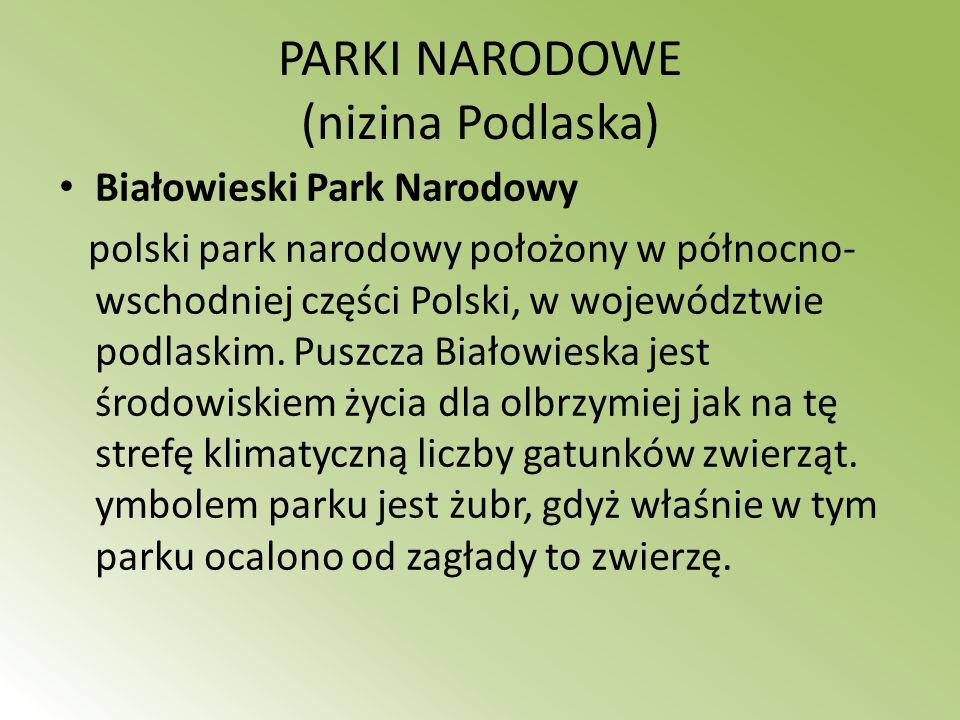 PARKI NARODOWE (nizina Podlaska)