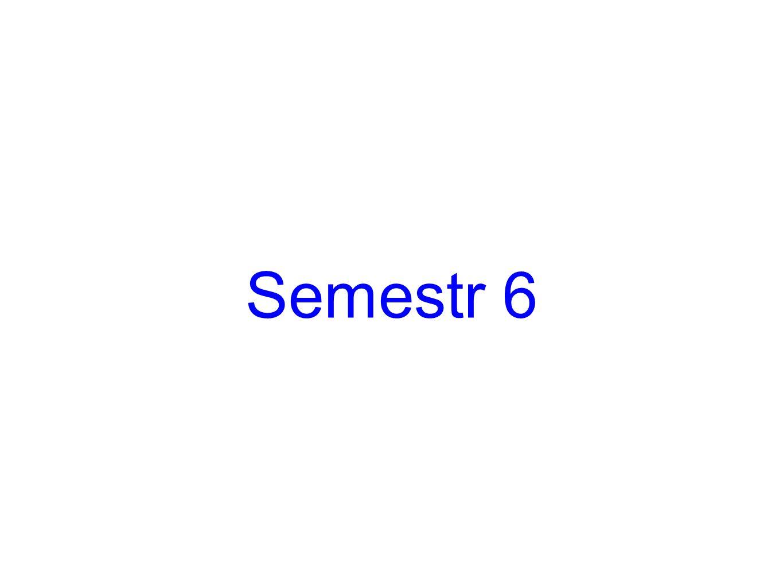 Semestr 6