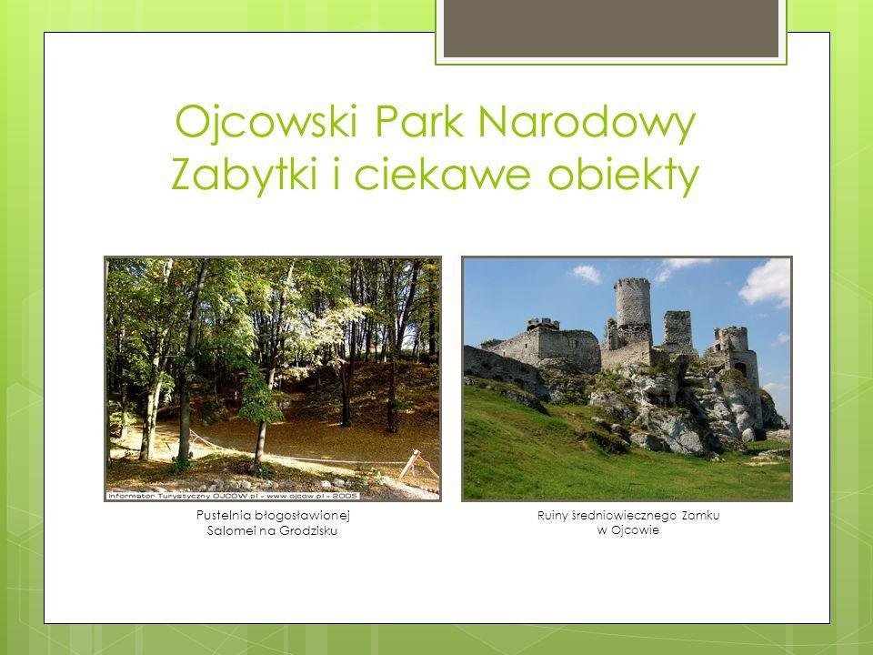 Ojcowski Park Narodowy Zabytki i ciekawe obiekty