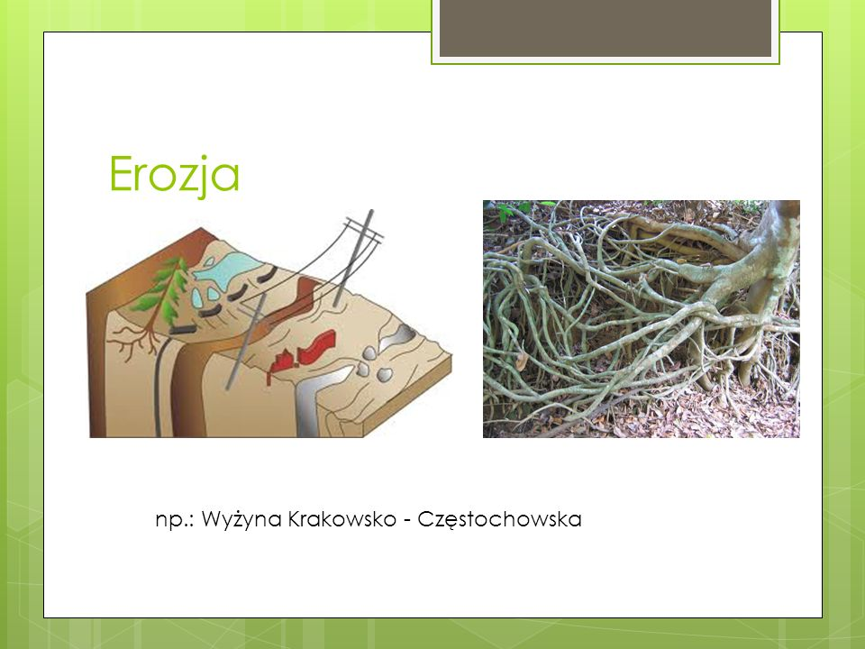 Erozja Erozja deszczowa np.: Wyżyna Krakowsko - Częstochowska