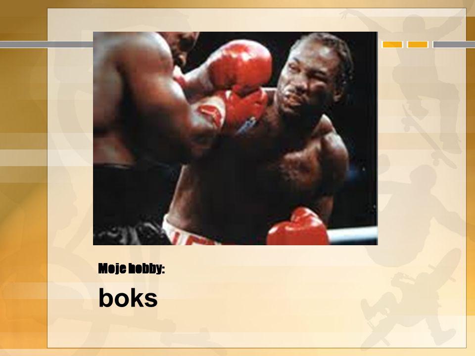 Moje hobby: boks