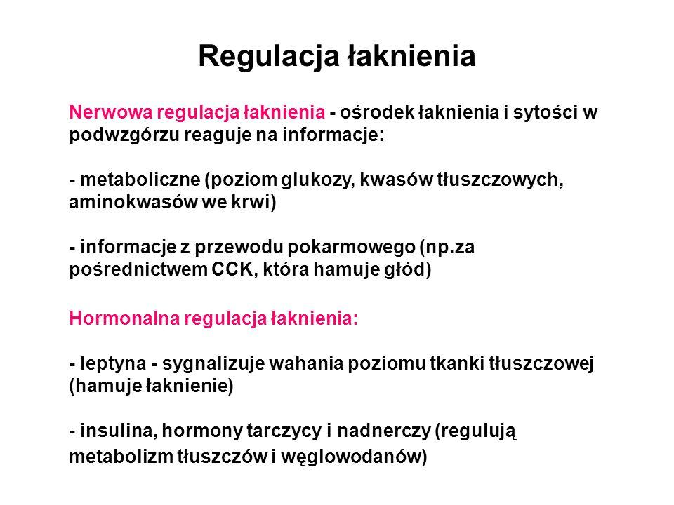 Regulacja łaknienia Nerwowa regulacja łaknienia - ośrodek łaknienia i sytości w podwzgórzu reaguje na informacje: