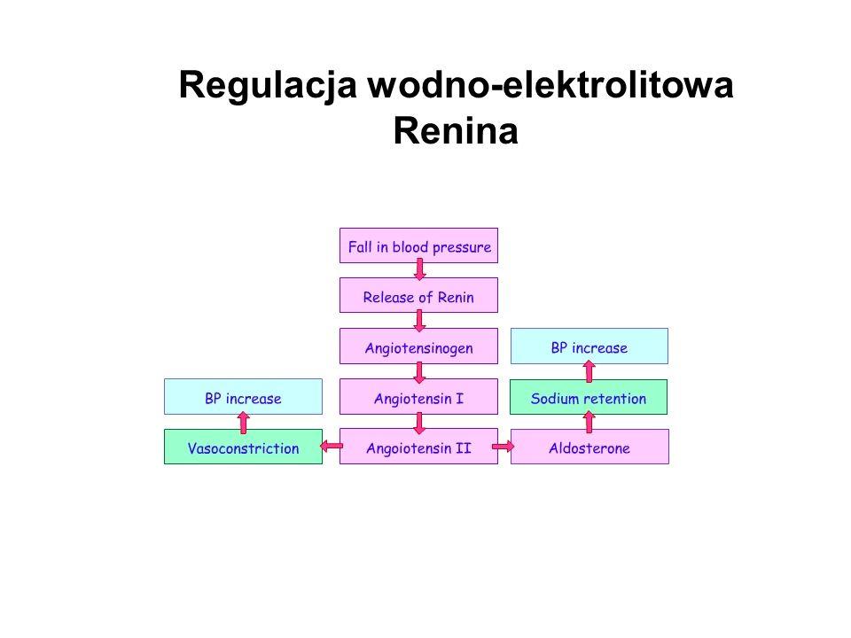 Regulacja wodno-elektrolitowa