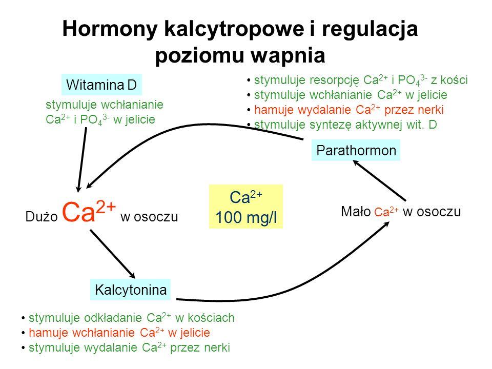 Hormony kalcytropowe i regulacja