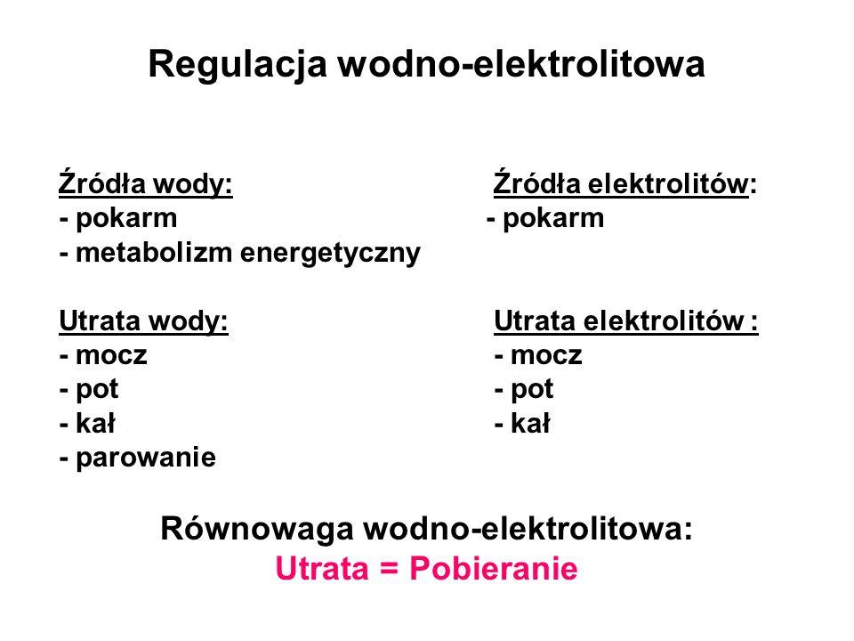 Regulacja wodno-elektrolitowa Równowaga wodno-elektrolitowa:
