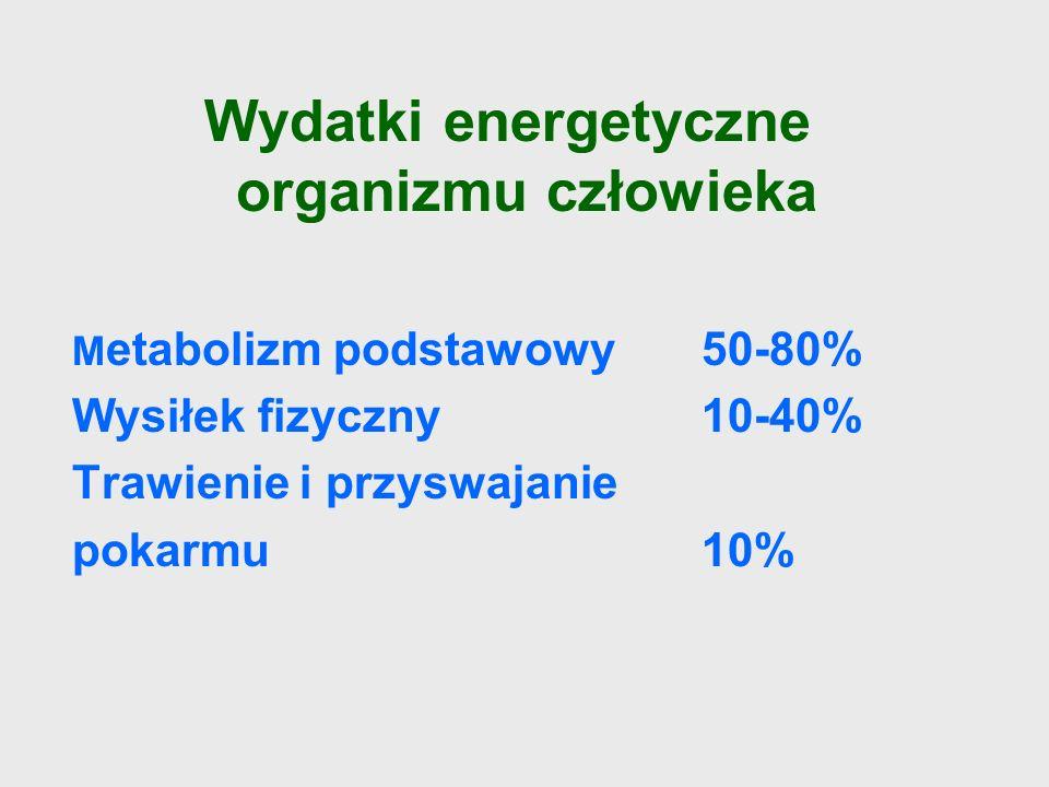 Wydatki energetyczne organizmu człowieka