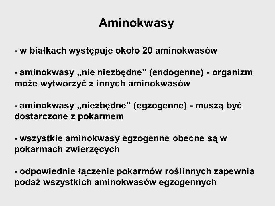 Aminokwasy - w białkach występuje około 20 aminokwasów