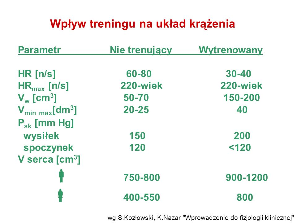  400-550 800 Wpływ treningu na układ krążenia