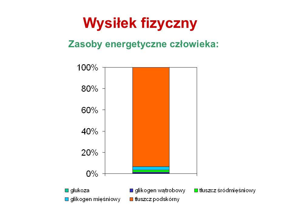 Wysiłek fizyczny Zasoby energetyczne człowieka: