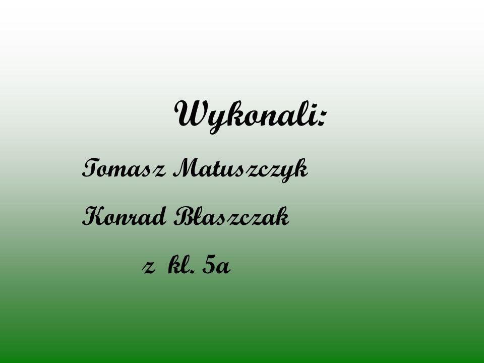 Wykonali: Tomasz Matuszczyk Konrad Błaszczak z kl. 5a