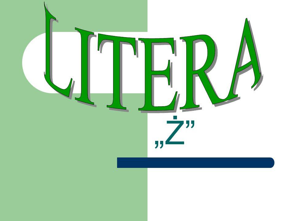 """LITERA """"Ż"""