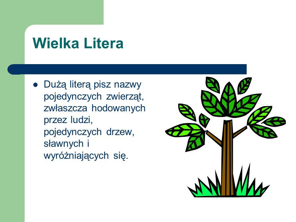Wielka Litera Dużą literą pisz nazwy pojedynczych zwierząt, zwłaszcza hodowanych przez ludzi, pojedynczych drzew, sławnych i wyróżniających się.