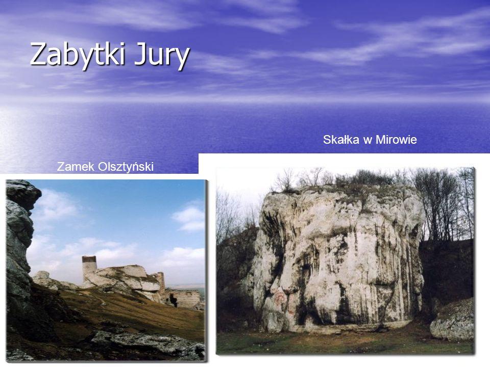 Zabytki Jury Skałka w Mirowie Zamek Olsztyński