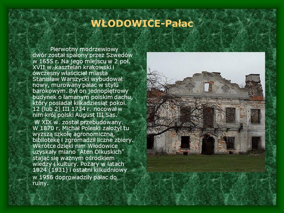 WŁODOWICE-Pałac